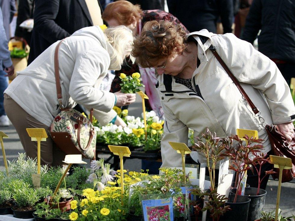 Na Anděl se opět vrátí farmářské trhy. Ilustrační foto.