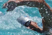 POTVRDIT PEKING. Mistrovství republiky je pro plavce důležité. Pro potvrzení nominace na OH musí splnit limit alespoň na 98 procent.