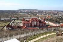 Botanická zahrada v pražské Troji.