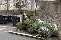 Nevyhazujte vánoční stromky do popelnic, prosí Pražské služby.