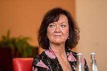 Debata Pražského deníku, která začala na autobusové stanici na Veleslavíně a pokračovala na Terminálu 3 v hotelu Ramada 13. října v Praze. Semelová