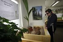 Výstava v botanické zahradě je pro všechny smysly