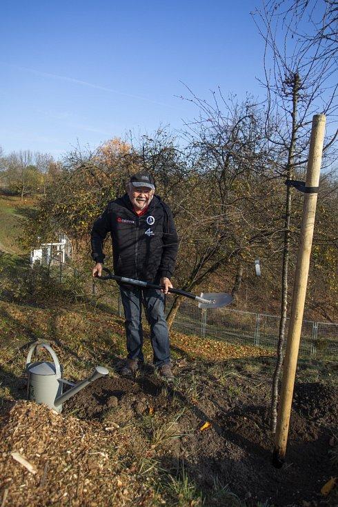 Karel Loprais vysadil svůj strom v pražské botanické zahradě.