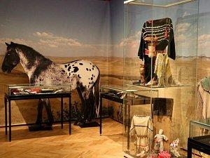 Výstava Indiáni v Náprstkově muzeu