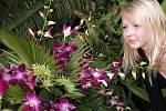 Výstava orchidejí v botanické zahradě Troja. Na orchideje se přijela z Kladna podívat i slečna Renata na snímku.