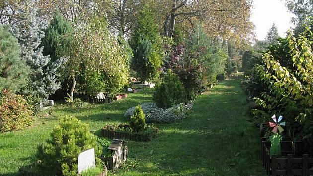 Na zvířecím hřbitově Drahaň se již čtyři roky nepohřbívá. Iniciativa Pet Pieta, která o něj pečuje, se snaží s magistrátem vyjednat rozšíření pozemku.