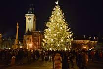 Vánoční strom na Staroměstském náměstí během první adventní neděle v roce 2020.