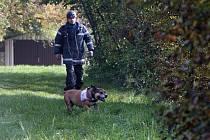 Desítky policistů za účasti policejních psovodů pokračovaly druhým dnem 14. října v pátrání po devítileté školačce Anně Janatkové v okolí ulice Pod Písečnou v Praze 8.