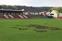 SPOUŠŤ, kterou za sebou na stadionku ve Štěchovicích zanechala divoká prasata.
