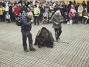Produkci s živým medvědem někteří pojali jako zábavnou show.