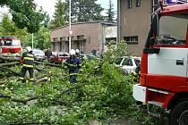 Středočeští hasiči odstraňují napadané stromy po bouřce.