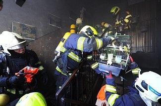 Hasiči zasahovali ve Kbelích při požáru bytu, evakuovali lidi i zvířata.