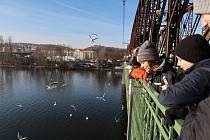 S ornitologem za opeřenci k Vltavě: Děti se učí o ptactvu v terénu.