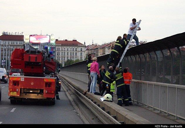 Muž se ocitl na zábraně mostu již za svítání, přesvědčit se ho od chystaného skoku podařilo až po třech hodinách.