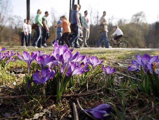 Teplé a slunné počasí panovalo v neděli 18. března 2012 v Praze. Snímek je z pražské Stromovky.
