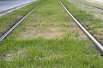 Střet multikáry a spěšného vlaku ve směru na Brno zablokoval v pátek před osmou ráno dopravu na železniční trati Brno – Česká Třebová. Ilustrační foto.