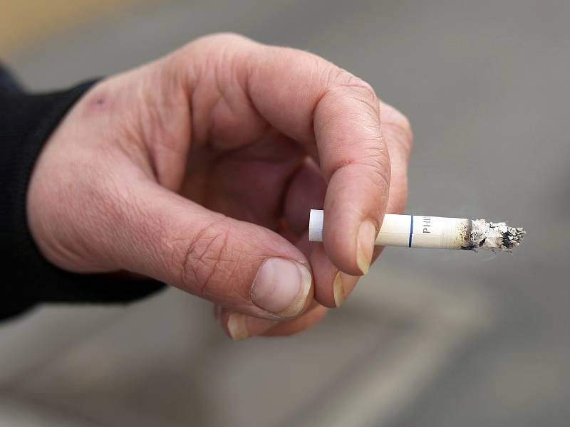 Větší zájem o balené cigarety a potřeby k nim pozorují i jejich prodejci a internetové vyhledávače.