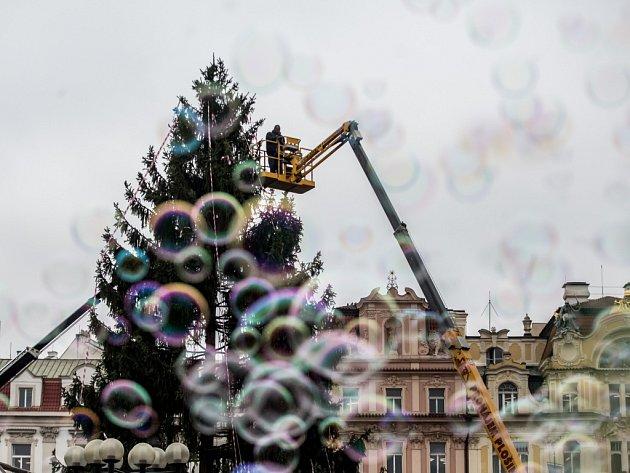 Vánoční strom na Staroměstském náměstí. Ilustrační foto.