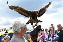 80. výročí otevření letiště na Ruzyni Runway Festival