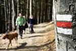 Turistických tras je v Praze málo a fungují spíše jako spojnice se Středočeským krajem.