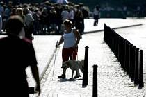 25. ročník Mistrovství České republiky ve výkonu vodicích psů pro nevidomé proběh v sobotu 6. září na Václavském náměstí.