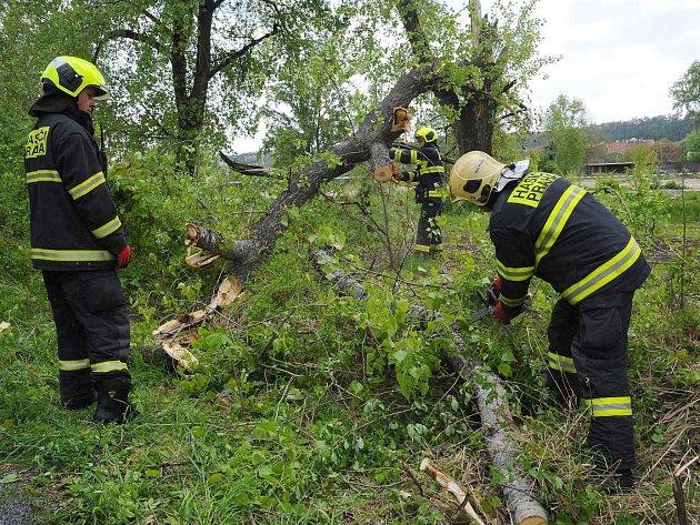 Rozřezání větví stromů na Rohanském nábřeží.