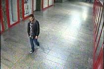 Pomozte vypátrat pachatele, který ve vestibulu metra fyzicky napadl mladíka. Nakonec mu ještě sebral veškeré peníze, které u sebe měl.