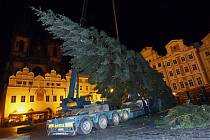 Vánoční strom na Staroměstské náměstí dorazil v úterý nad ránem.