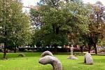 Plastiku Had můžete vidět v parku Portheimka