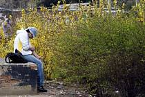 OCHRANA ZA OSM KORUN. Tolik stojí ročně  každého Pražana program bezplatné výměny injekcí a jehel narkomanům. Chrání ho však před šířením nebezpečných chorob jako je žloutenka a AIDS./Ilustrační foto