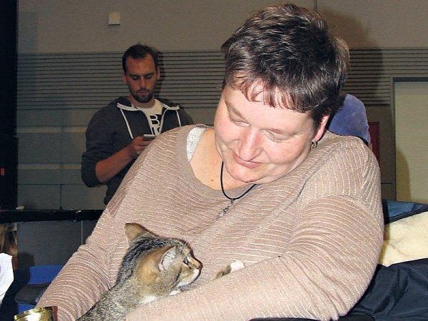 Miss kočka 2015: jednu zcen získal ikocour Honzík, který stejně jako jeho majitelka nemůže chodit. Foto: