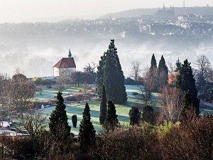 Vánoční dárky z pražské botanické zahrady