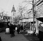Adventní trhy. První stánky a kolotoče se s blížícím Mikulášem a Vánocemi otevřely na Karlově náměstí 17. listopadu. Rok 1947.