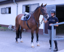 Pražští policisté se rozloučili se služebním koněm Lordem.