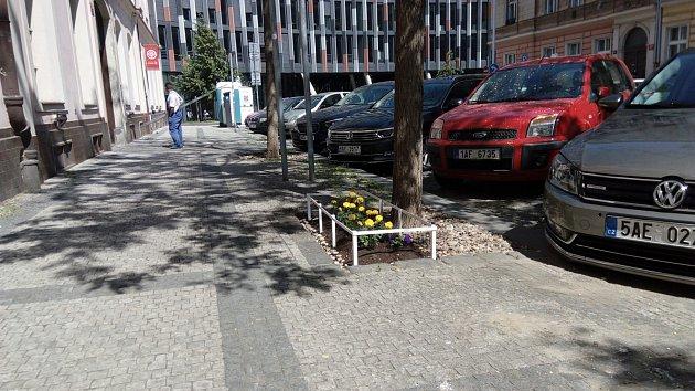Guerilla gardening v Karlíně.