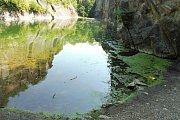 O revitalizaci Prokopského jezírka se pře spolek ekologů s pražským magistrátem.