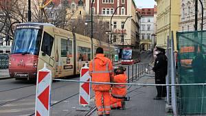 V Praze kvůli protestu vlezli aktivisté na strom.