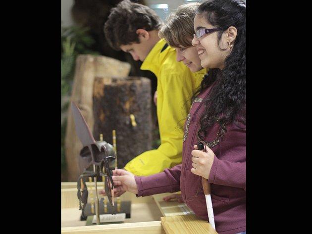 BEZ HMATU to nejde. Dotyková výstava v botanické zahradě je určená nejen nevidomým.