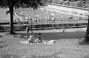 Přírodní koupání. Koupaliště v Šáreckém údolí je v provozu již od roku 1930. Bazén je napájen potokem, tudíž je voda velmi chladná. Dnes se v areálu nachází dva bazény pro plavce, dětské brouzdaliště, menší tobogán, houpačky, skluzavky a trampolína.