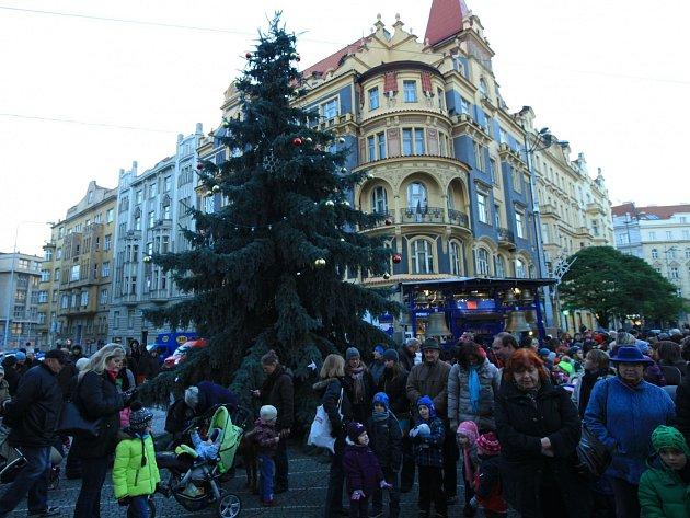 Na Strossmayerově náměstí ve středu 27. listopadu rozsvítili strom