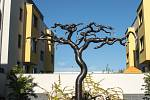 Lukáš Rais, svítící strom, Nové Chabry.