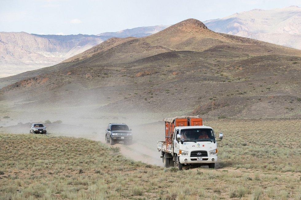 Všechny čtyři koně jsou převáženi z Bulgan Sumu do Tachin Talu v mongolské Gobi na dvou nákladních autech. Při transportu je myšleno na všechno.