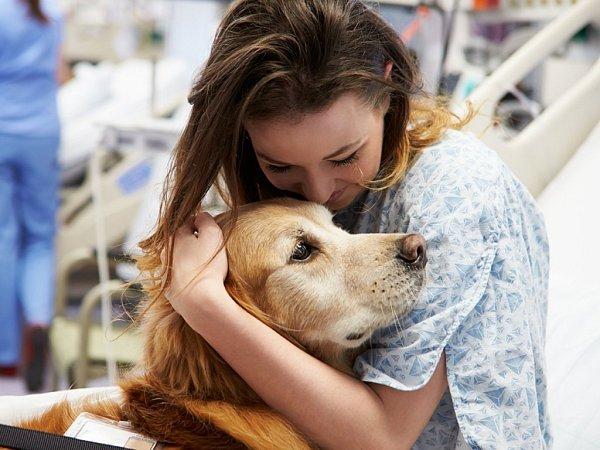 Program 'Era pomáhá regionům': léčba psí láskou.