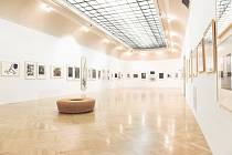 Galerie Hollar.