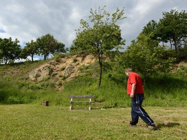 NA VIDOULI. Přírodní památka Vidoule je jedním z nejvyšších pražských kopců