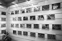 Fotografie žižkovského fotografa můžete i v těchto těžkých dobách vidět v galerii na místní poště. Současně je to snad jediná výstava, kterou můžete navštívit. Zdroj: Alžběta Bublanová