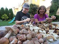 MASÁKY A HŘIBY. Tři čtvrtiny domácností chodí na houby. Lidé přitom rozšiřují spektrum hub, které sbírají. Stále oblíbenější jsou například růžovky neboli masáky. Ilustrační foto.