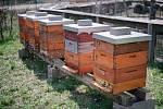 Komunitní včelnice v ekocentru Prales.