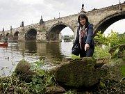 U Karlova mostu v Praze byly 13. června vyzvednuty a přesunuty historicky velmi cenné kamenné kvádry, které se z Juditina a Karlova mostu v minulosti zřítily do Vltavy a z jejího dna byly vyloveny při posledních rekonstrukčních pracích.  Na snímku vedoucí