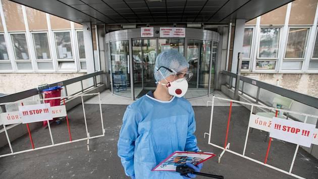 Studenti lékařských fakult pomáhají v boji proti koronaviru.